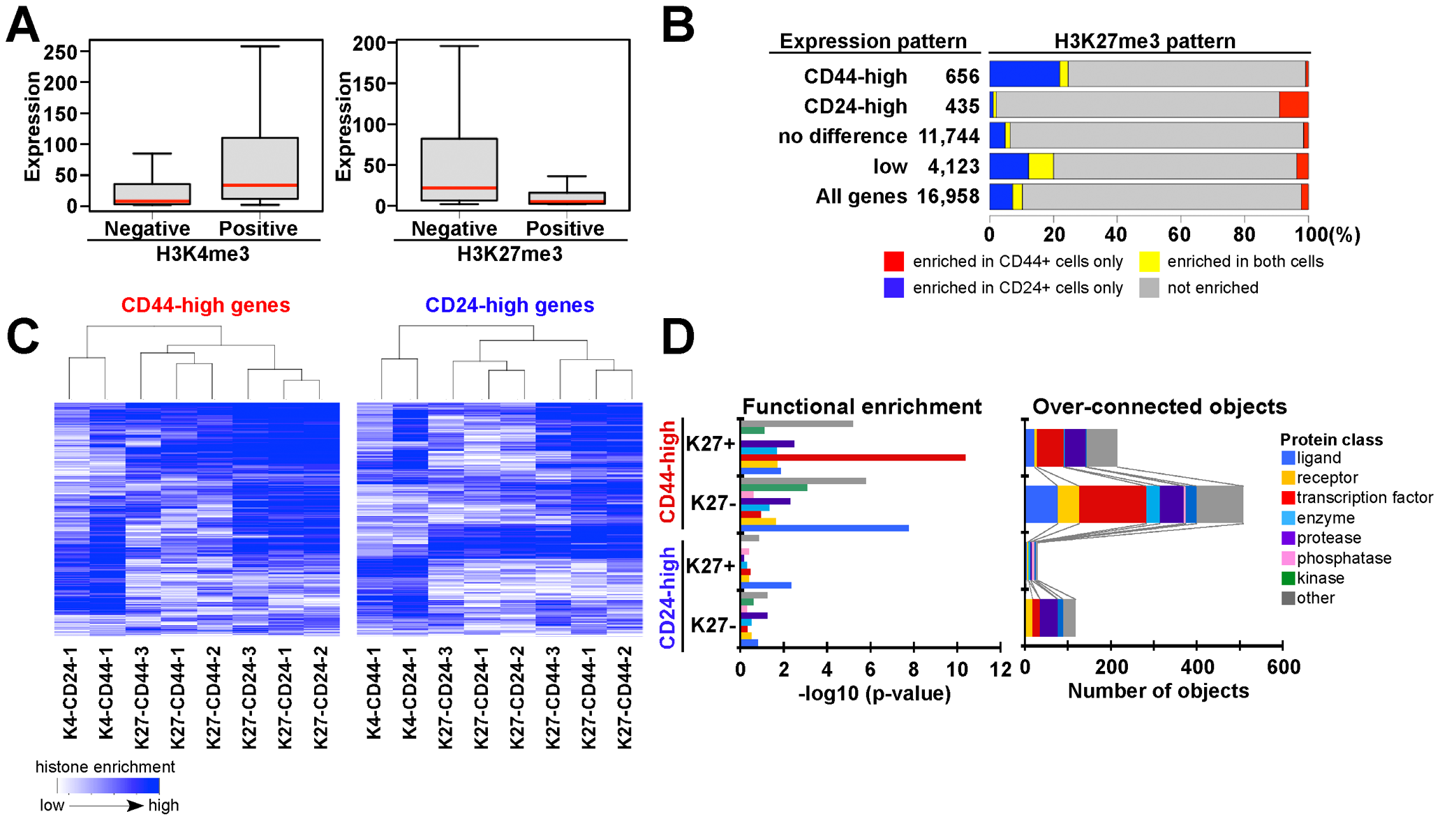 Associations between chromatin and cell type–specific expression patterns.