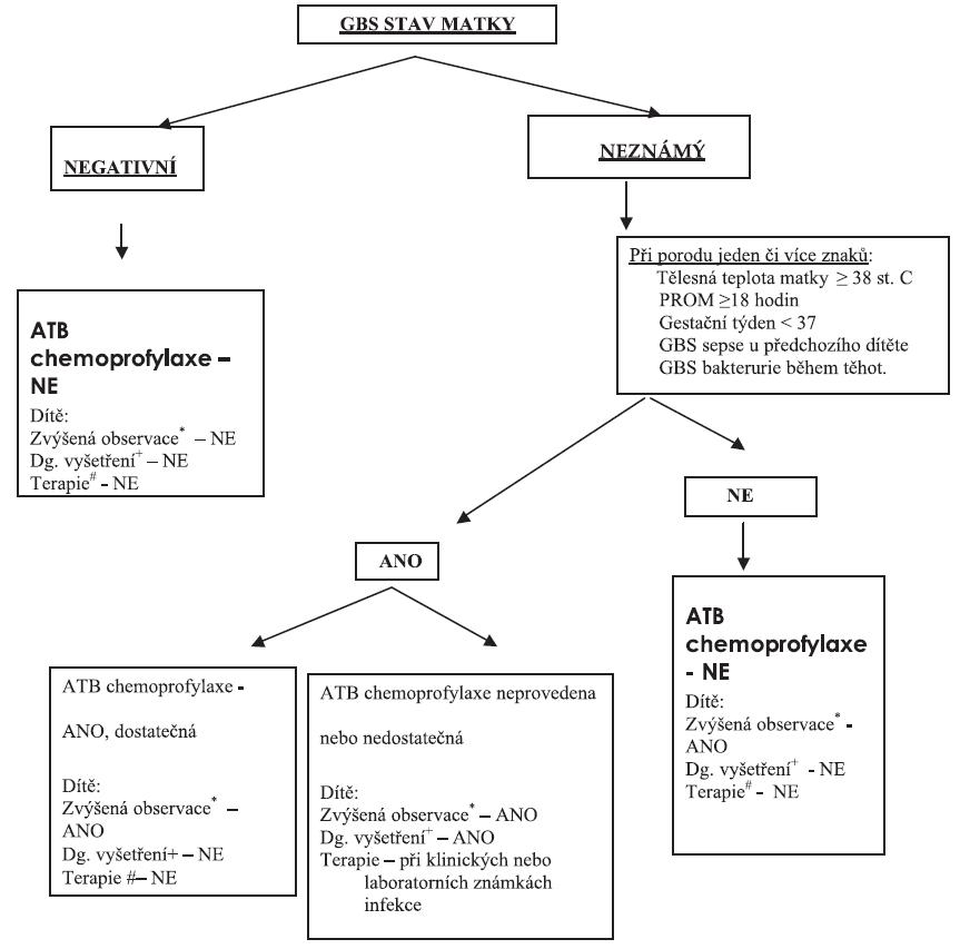 Algoritmus postupu péče o novorozence GBS pozitivních, negativních a nevyšetřených matek