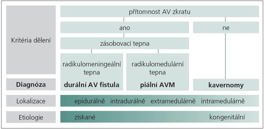 Schéma 1. Klasifikace spinálních AV malformací.