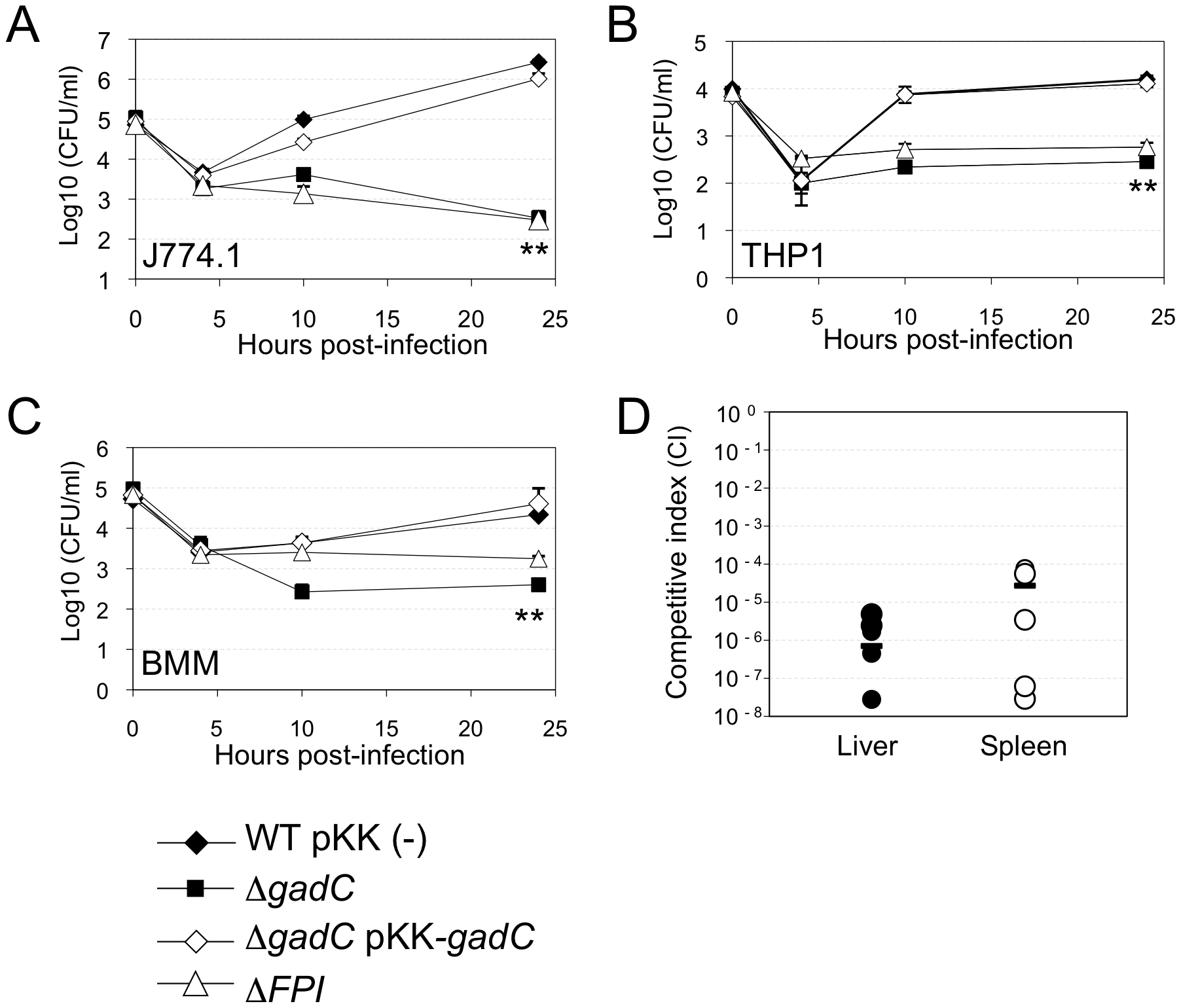 <i>gadC</i> inactivation affects intracellular survival and virulence.