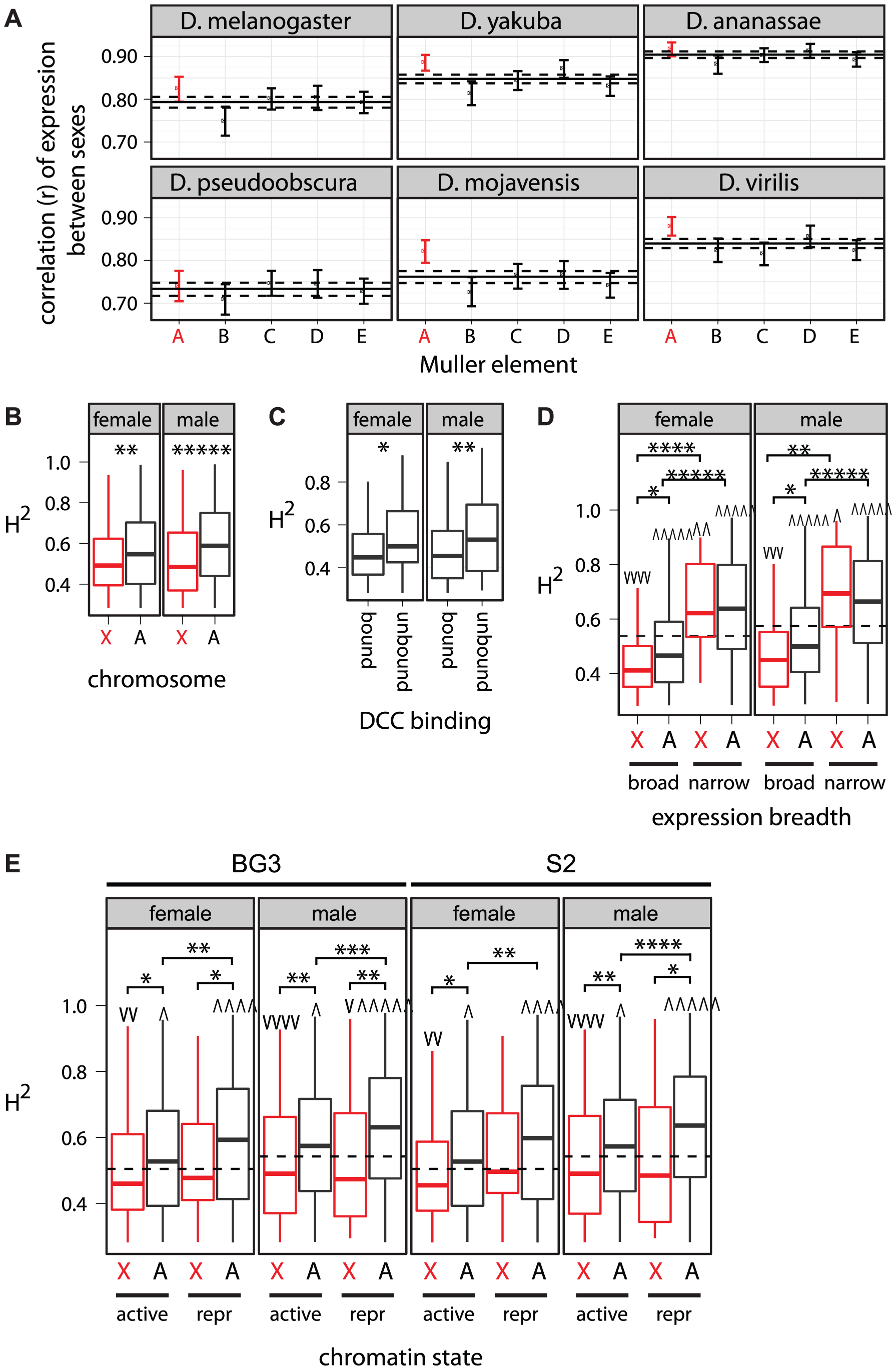 Intraspecific expression variation, X-linkage, DCC binding, expression breadth, and chromatin state.