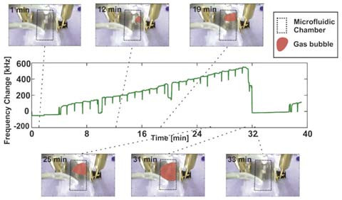 Fig. 6: Correlation between gas bubble formation in the microfluidic channel (shown by photographs) and its impact on the SAW sensor's resonance frequency.