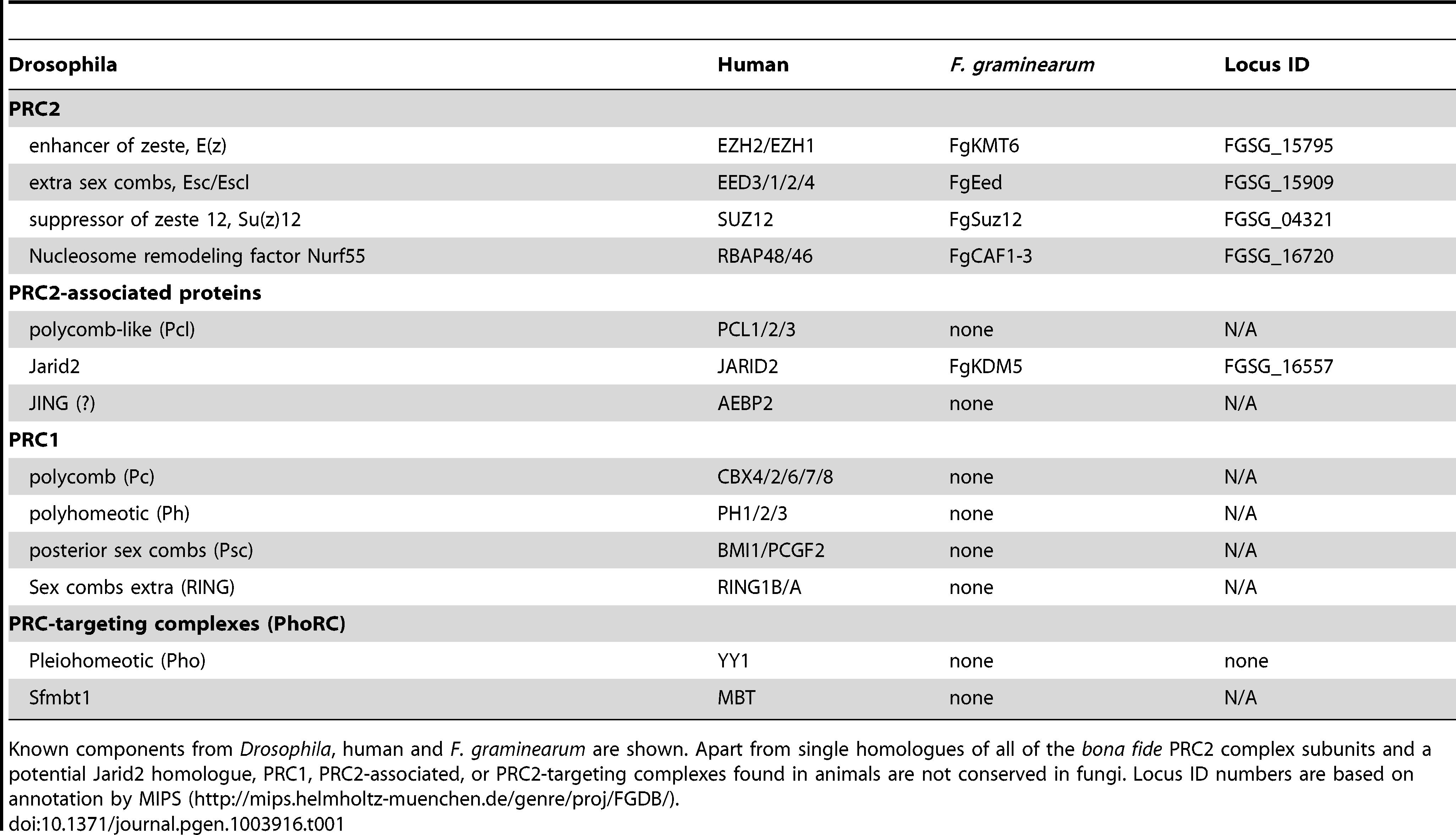 Components of Polycomb Repressive Complexes.