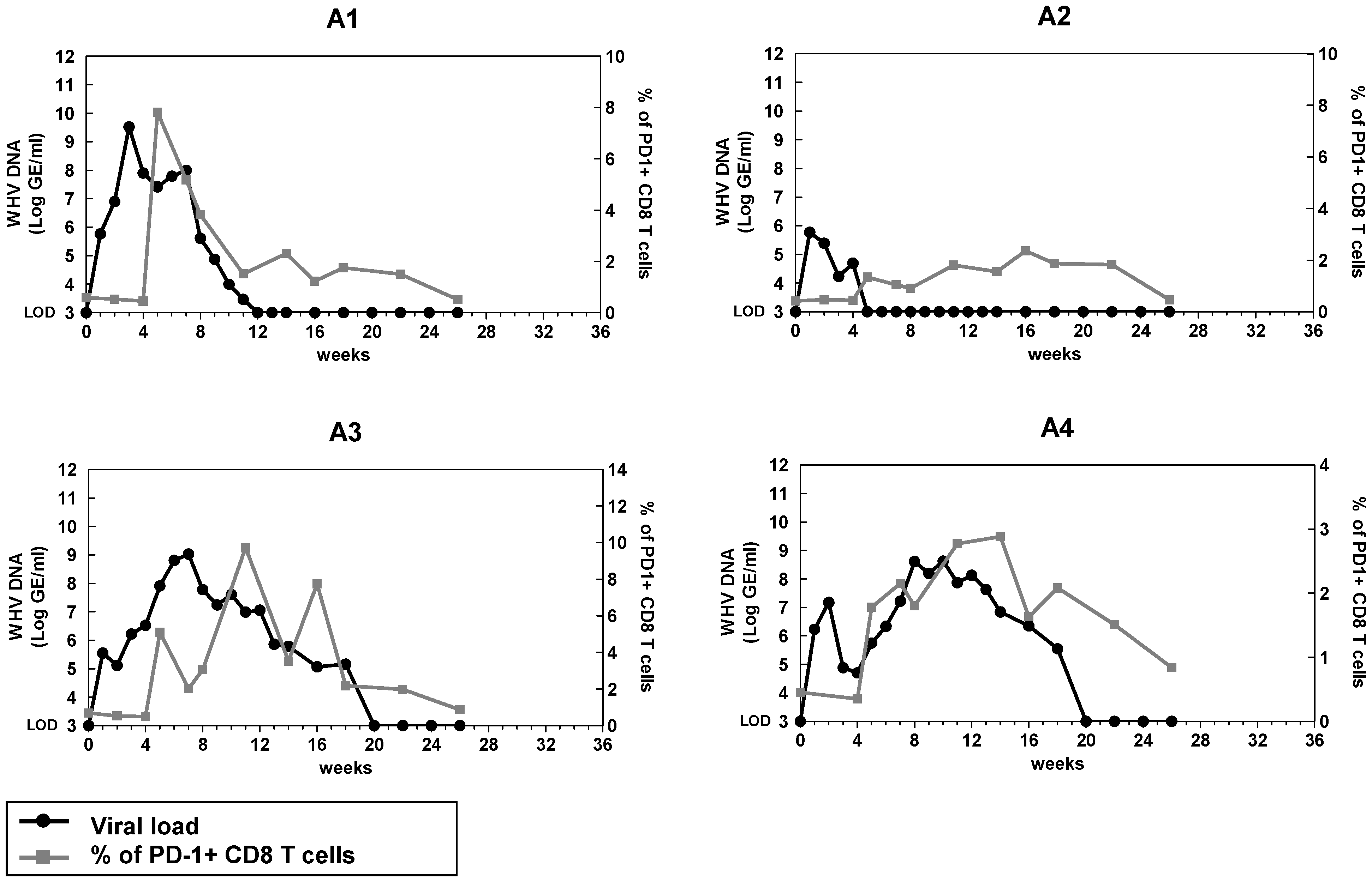 Kinetics of PD-1 expression on CD8 T cells during acute WHV infection.