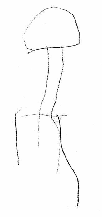 Řízená kresba – panák. Kresba je po formální i obsahové stránce značně opožděná. Výrazné rysy organicity (věk 5 let).