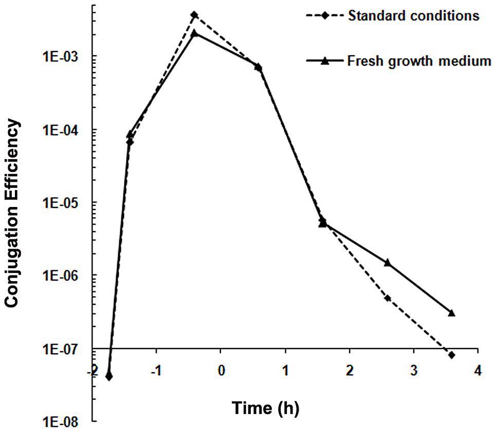 Conjugation kinetics of pLS20cat without and with replacing the recipient growth medium.