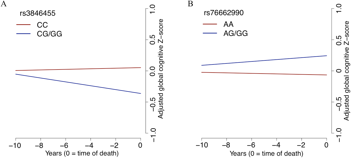 The slope of global cognitive decline by genotype.