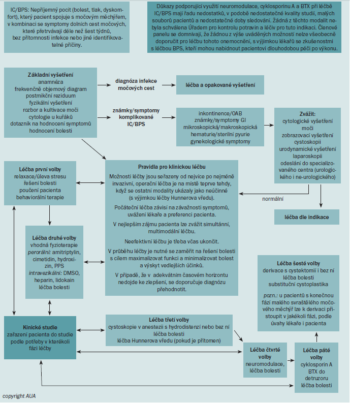 Schéma 6. AUA algoritmus pro léčbu.