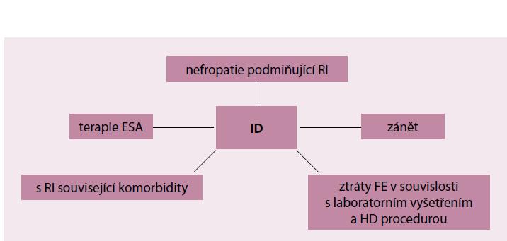 Příčiny sideropenie u nemocných s CKD.