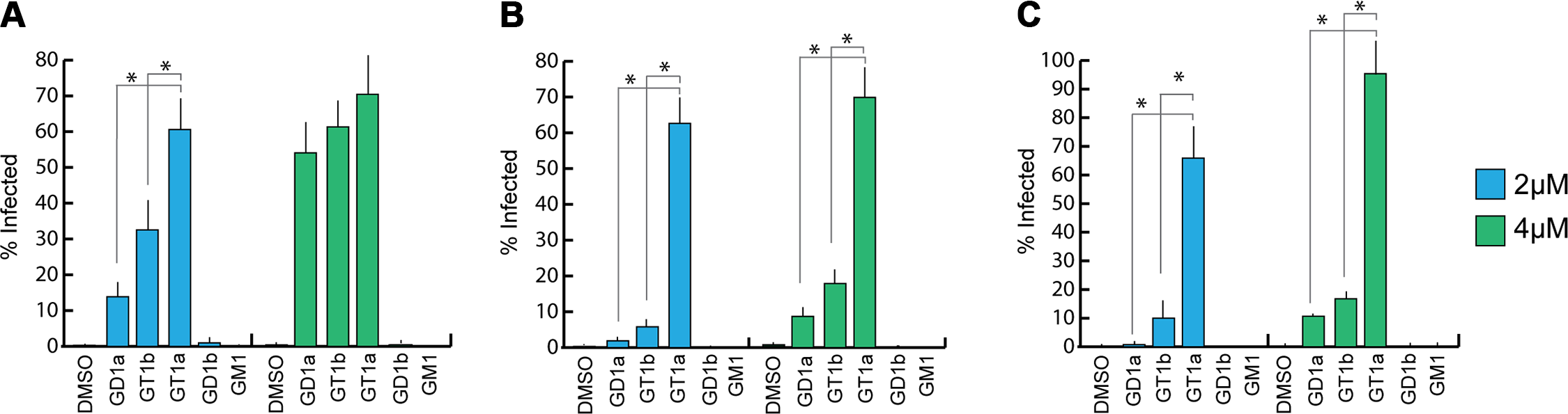 GT1a, GT1b, and GD1a supplementation rescues MuPyV infection of Gang-/- MEFs.