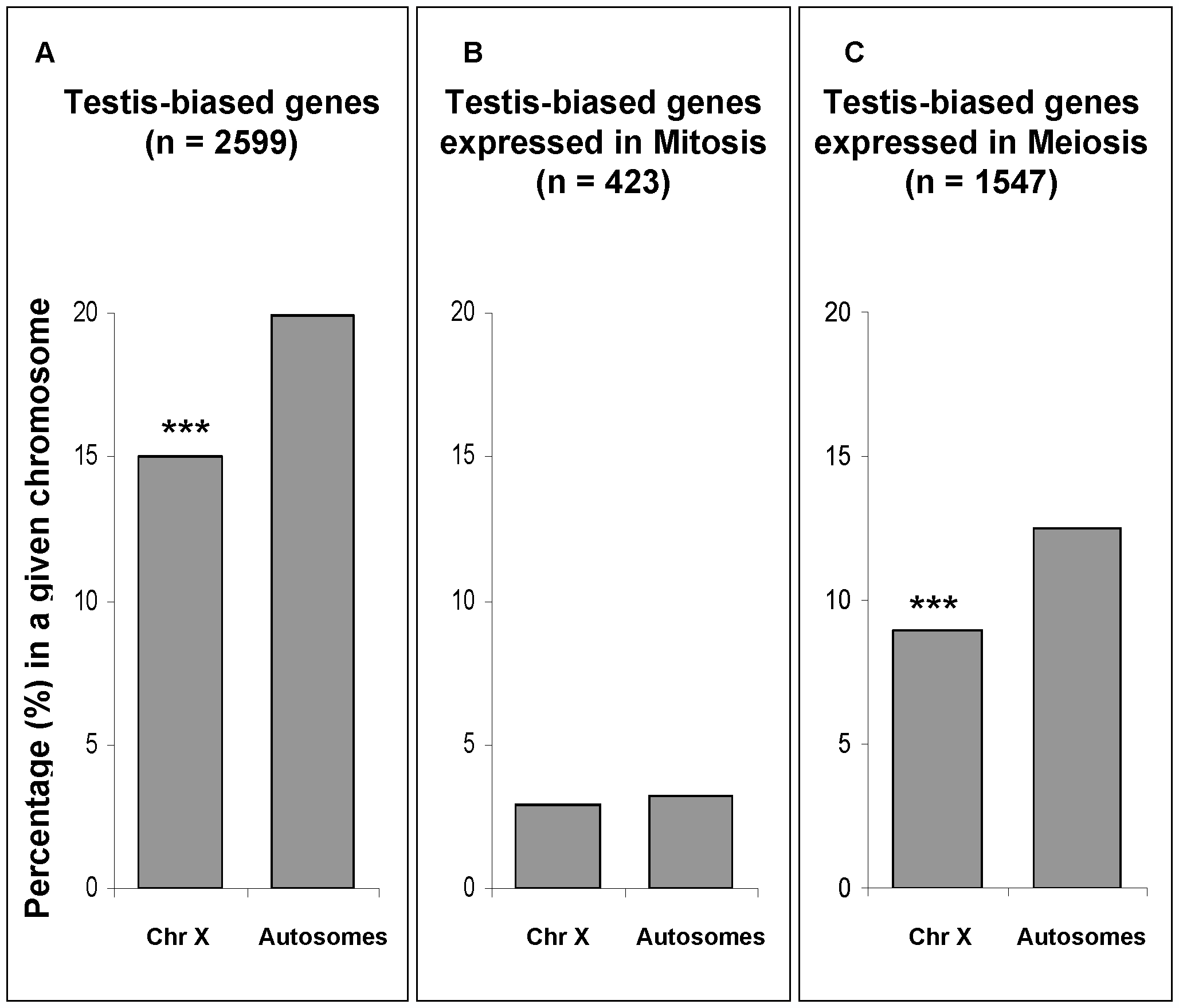Chromosomal percentages of testis-biased genes.