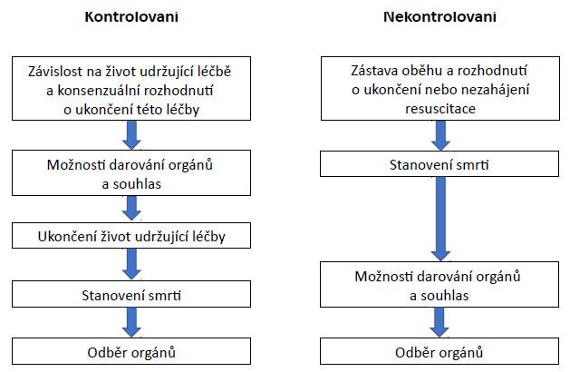 Rozdíly v logistice mezi kontrolovanými (kategorie III–V) a nekontrolovanými (kategorie I–II) DCD