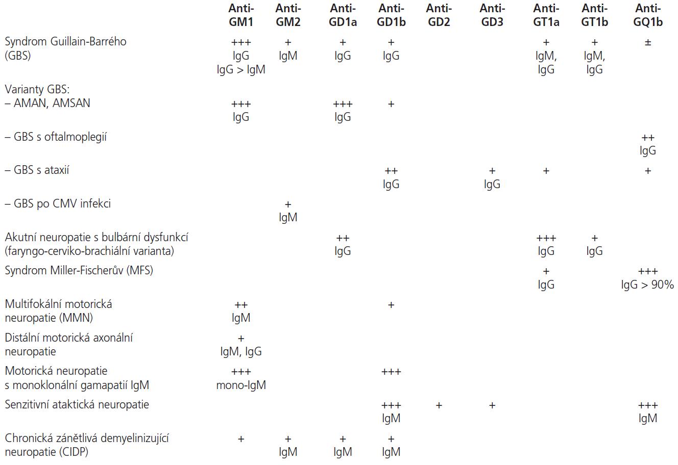 Přehled protilátek proti gangliosidům a souvislost jejich výskytu s akutními a chronickými zánětlivými neuropatiemi.
