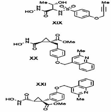 Cyklopropyl a alkinyl deriváty selektívnych inhibítorov TACE <sup>3)</sup>
