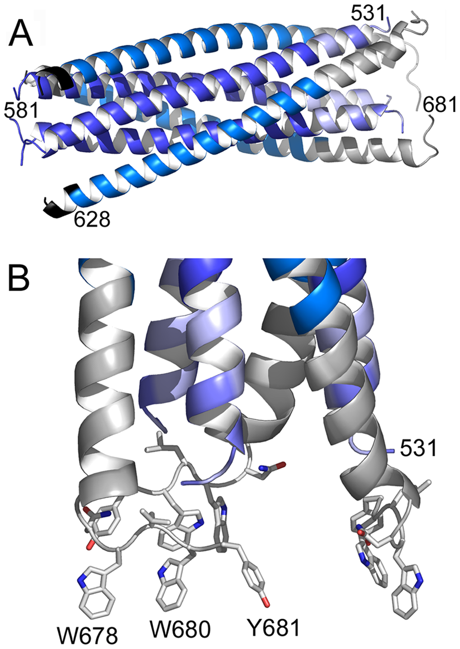 Crystal structure of gp41<sub>528–683</sub> reveals a 90 Å long rod-like structure.