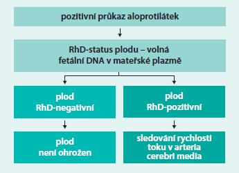 Schéma. Znázornění moderních diagnostických postupů při RhD-aloimunizaci