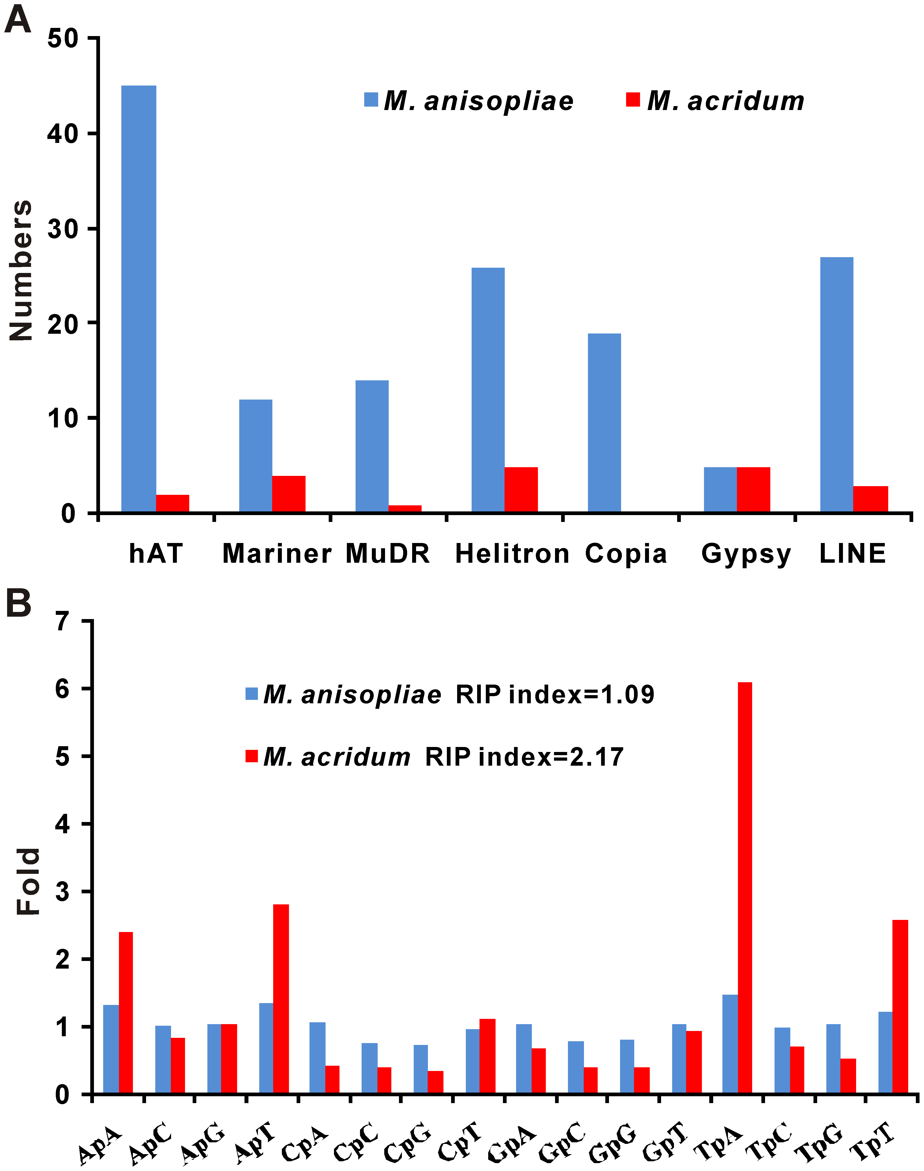 Families of transposase genes and estimation of RIP.