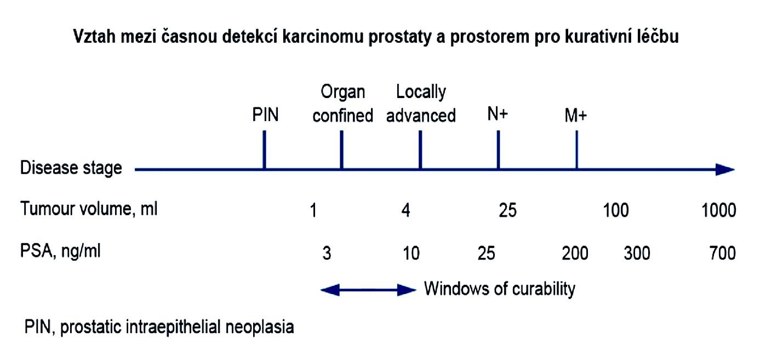 Schéma zachycující prostor pro možnou kurativní léčbu karcinomu prostaty Schéma zachycující prostor pro možnou kurativní léčbu karcinomu prostaty ve vztahu k jednotlivým stádiím onemocnění, objemu nádoru a hodnotám PSA. Období možné kurativní léčby karcinomu prostaty se týká časného onemocnění, kdy PSA obvykle nepřesáhne hodnotu 20–25 ng/ml a objem nádoru je obvykle přibližně do 5 ml.