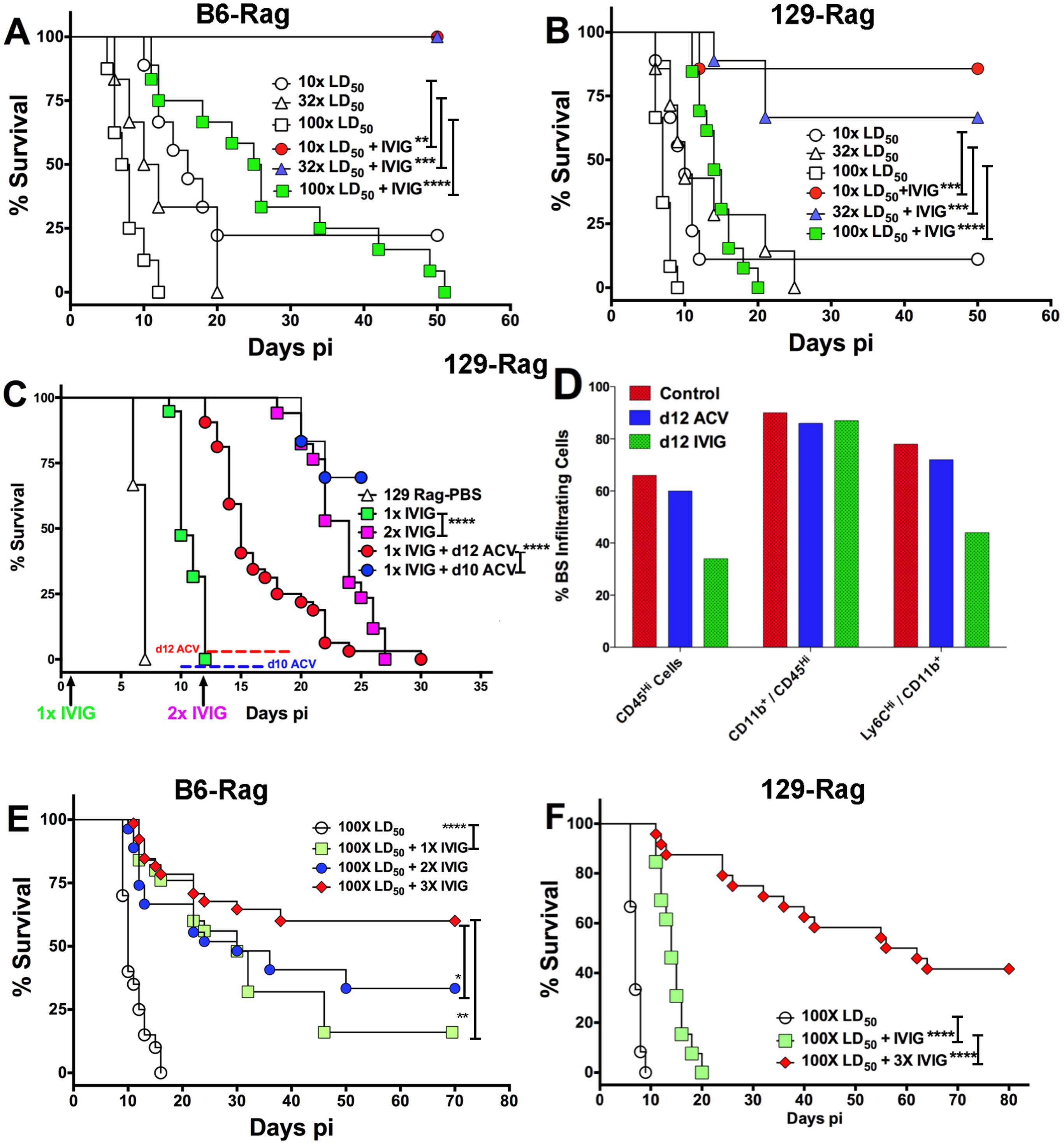IVIG protection of Rag mice is HSV1 dose dependent.