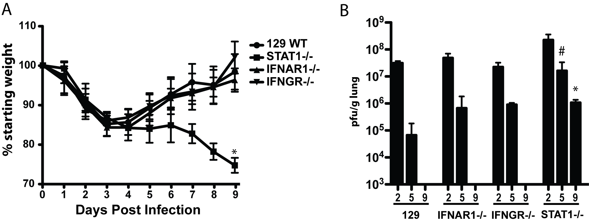 Mouse adapted SARS-CoV (rMA15) infection of 129 WT, IFNAR1−/−, IFNGR−/− and STAT1−/− mice.