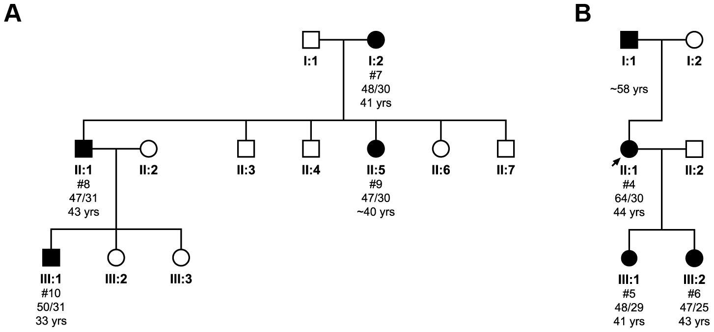 Pedigree analysis and the transmission of the pathogenic expanded allele in two families.