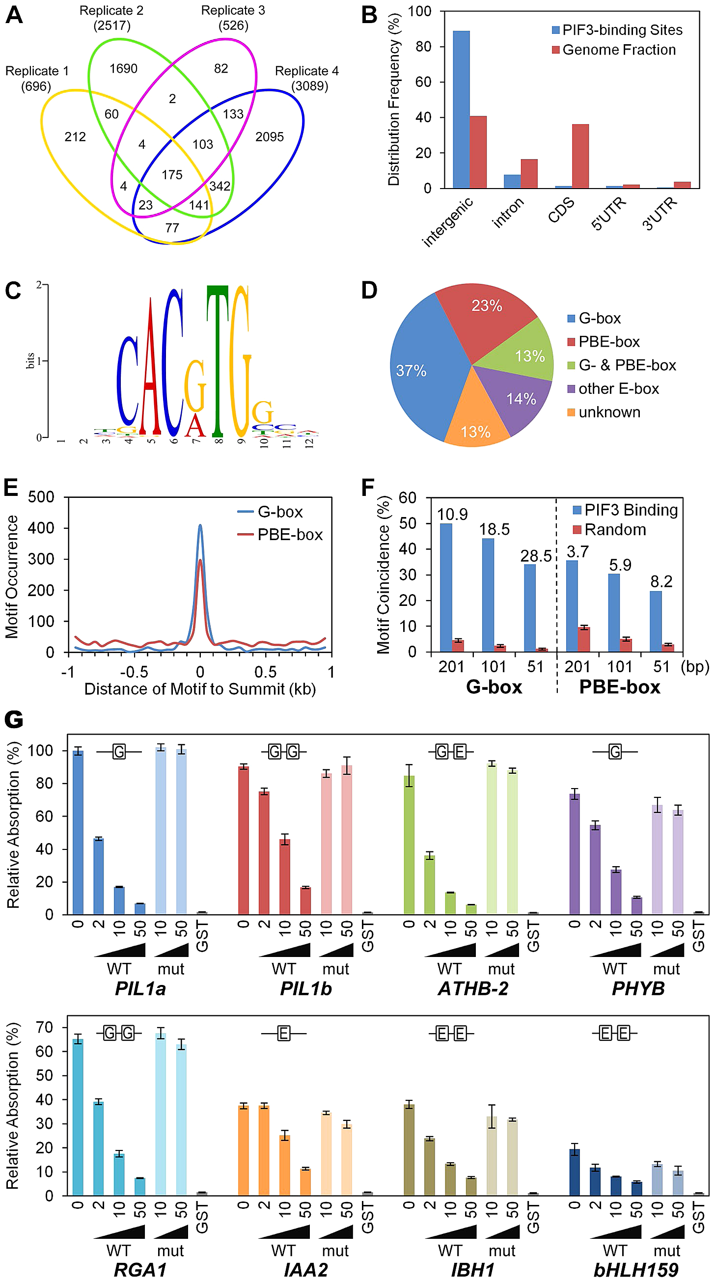 Genome-wide identification of PIF3-binding sites and motifs.