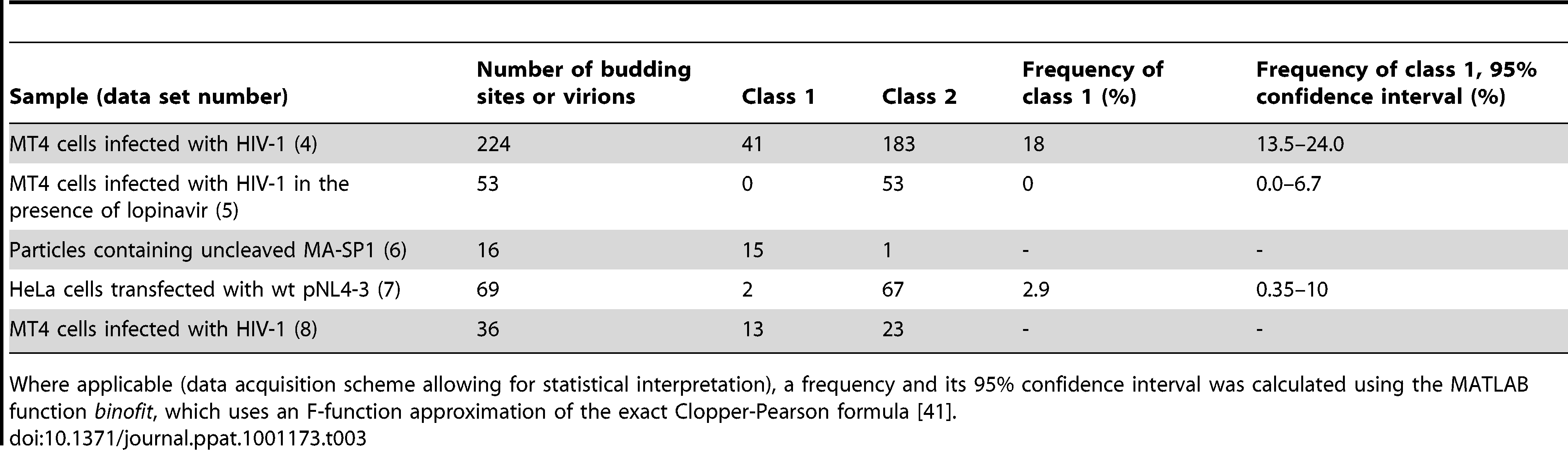 Number of budding sites or virions assigned to class 1 and class 2 Gag layer morphology, respectively, for the different sample groups.