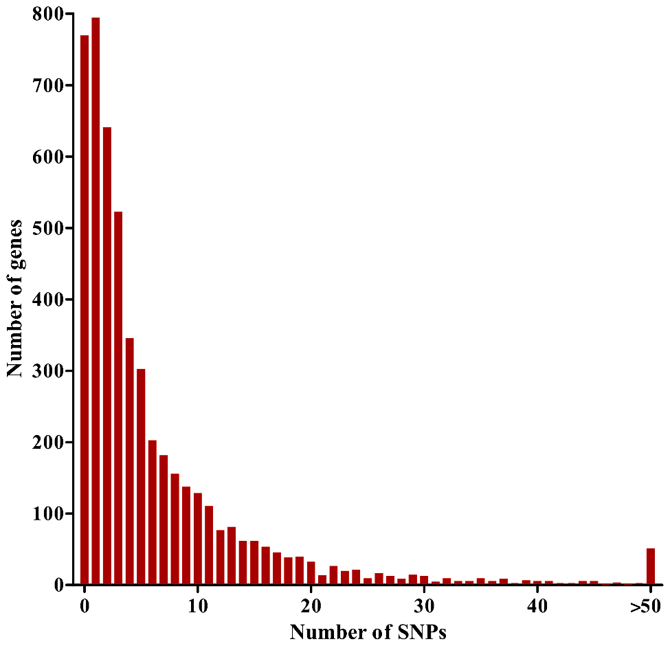 Distribution of numbers of SNPs per gene for 5,056 <i>P. falciparum</i> genes analyzed with a population sample of 65 Gambian clinical isolates.