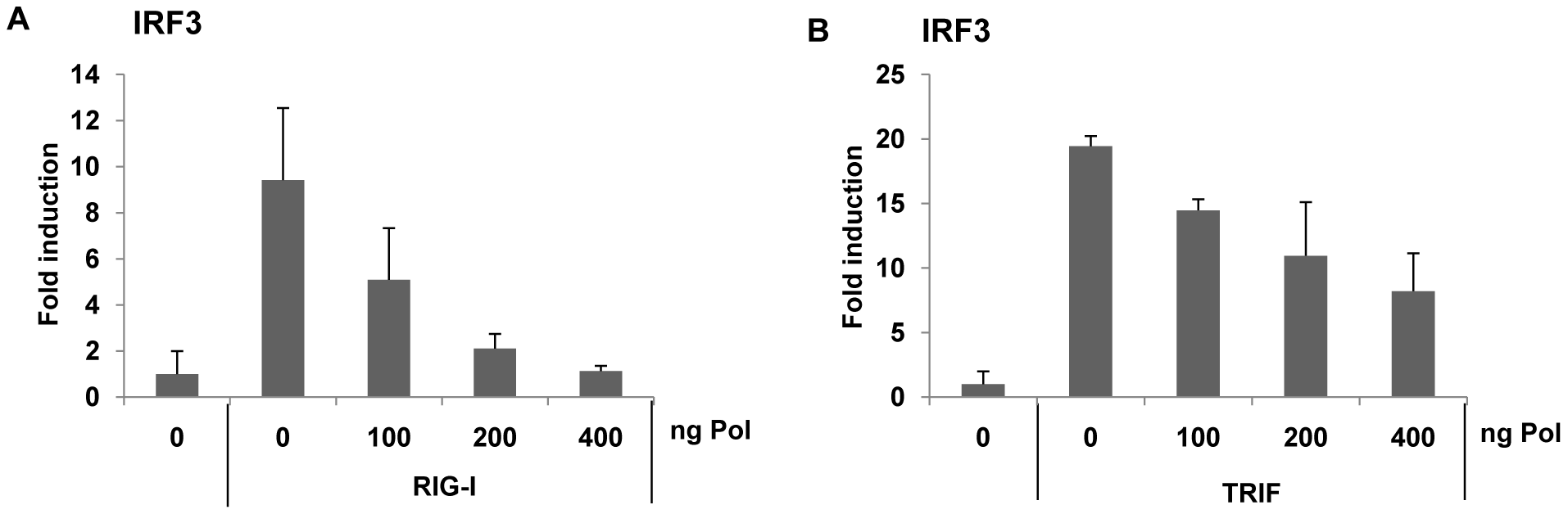 HBV Pol inhibits both RIG-I- and TRIF-induced IRF3 activation.