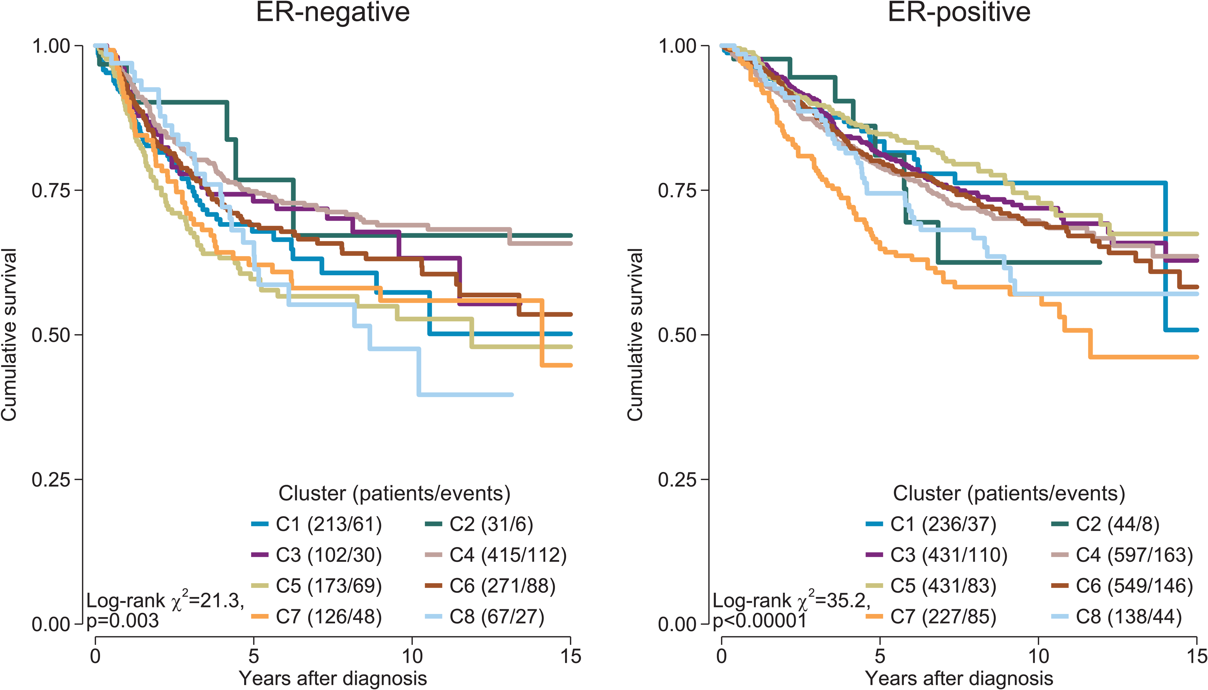 Survival plots by cluster separately for ER-positive and ER-negative disease.