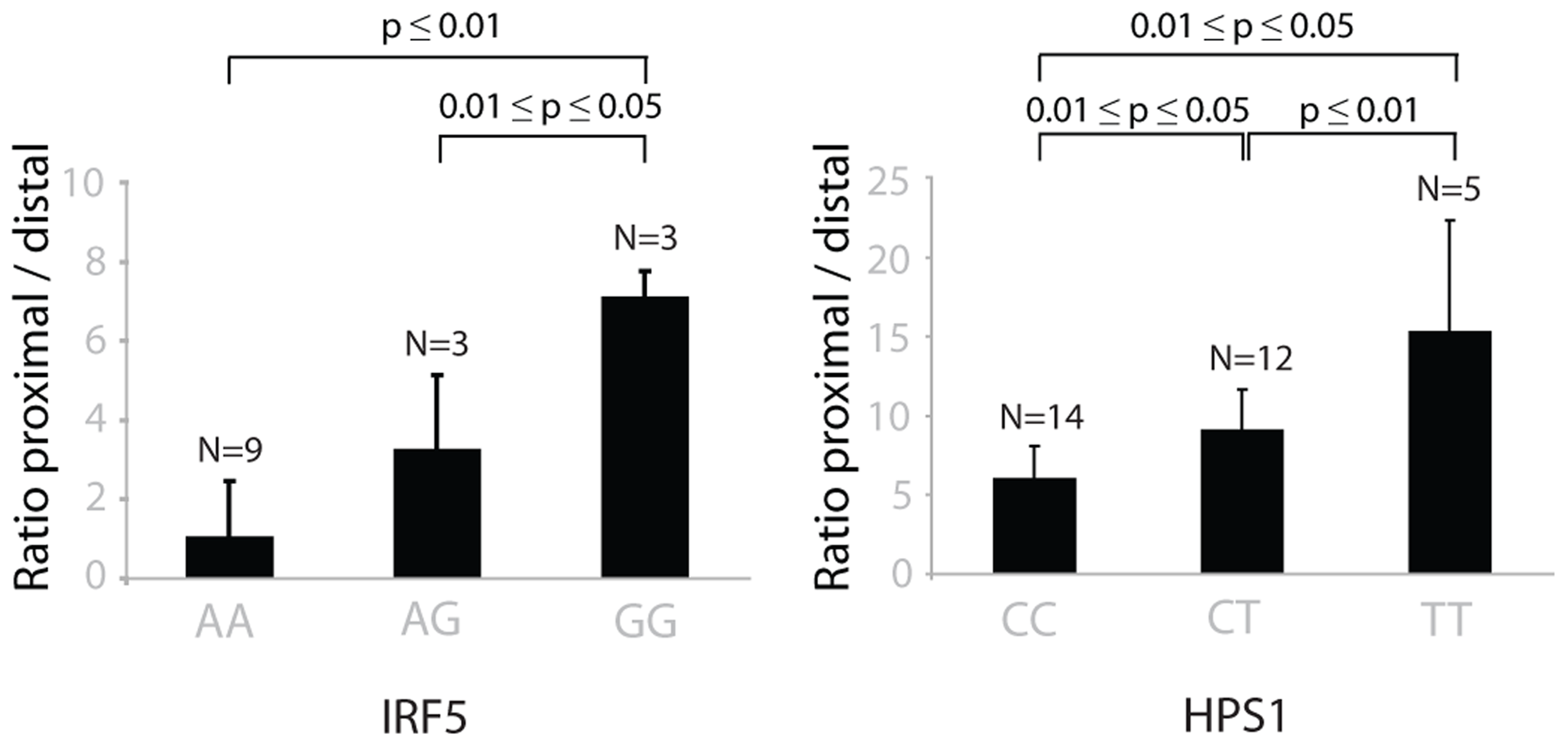 The choice of proximal/distal polyadenylation site in genes <i>IRF5</i> and <i>HPS1</i> depends on the genotypes of rs10488630 and rs11189600, respectively.