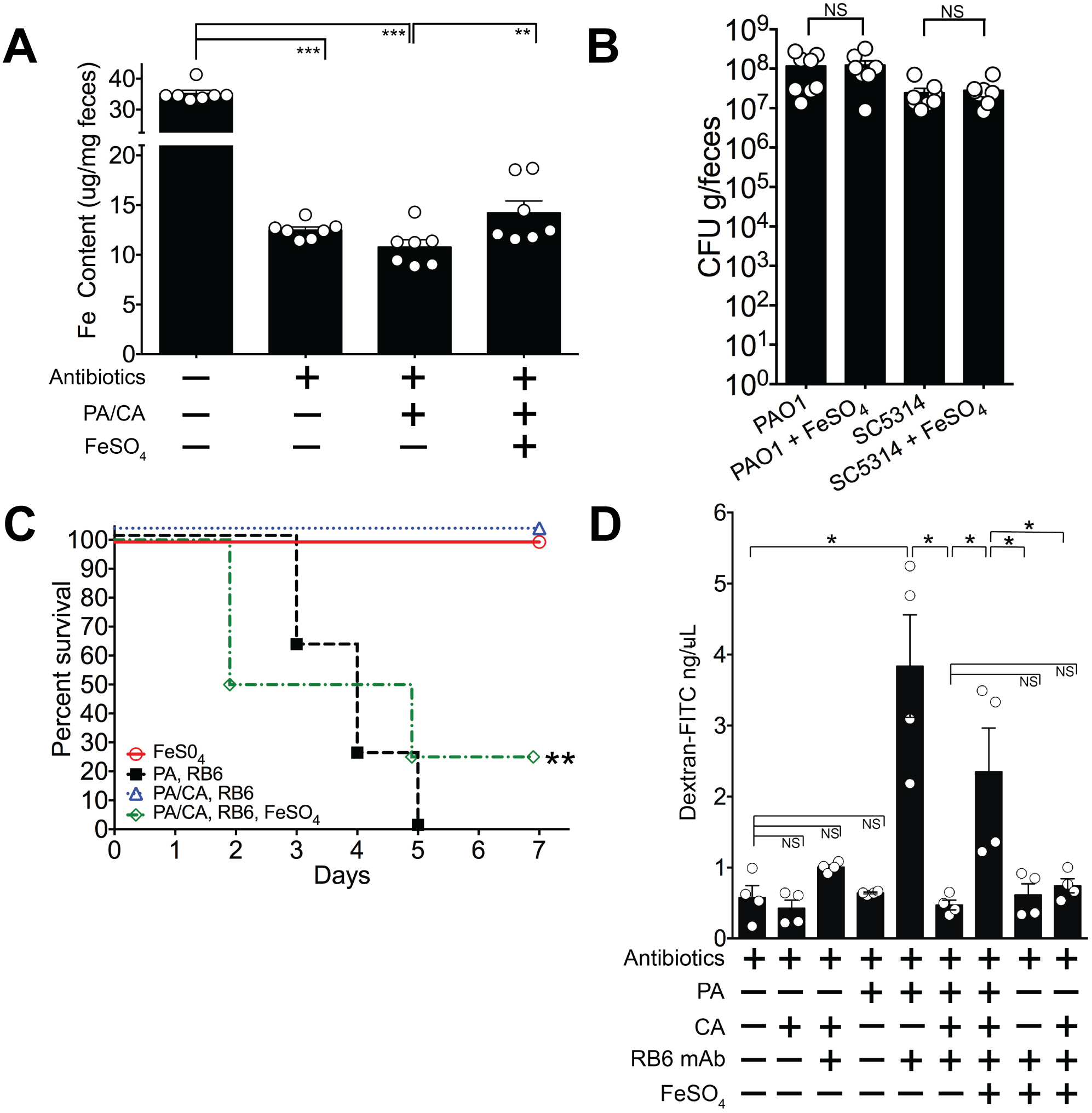 Iron supplementation restores <i>P</i>. <i>aeruginosa</i> virulence in <i>P</i>. <i>aeruginosa</i> and <i>C</i>. <i>albicans</i> colonized mice.