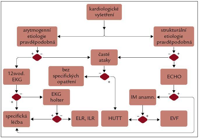 Algoritmus došetření pravděpodobné kardiogenní etiologie synkopy.