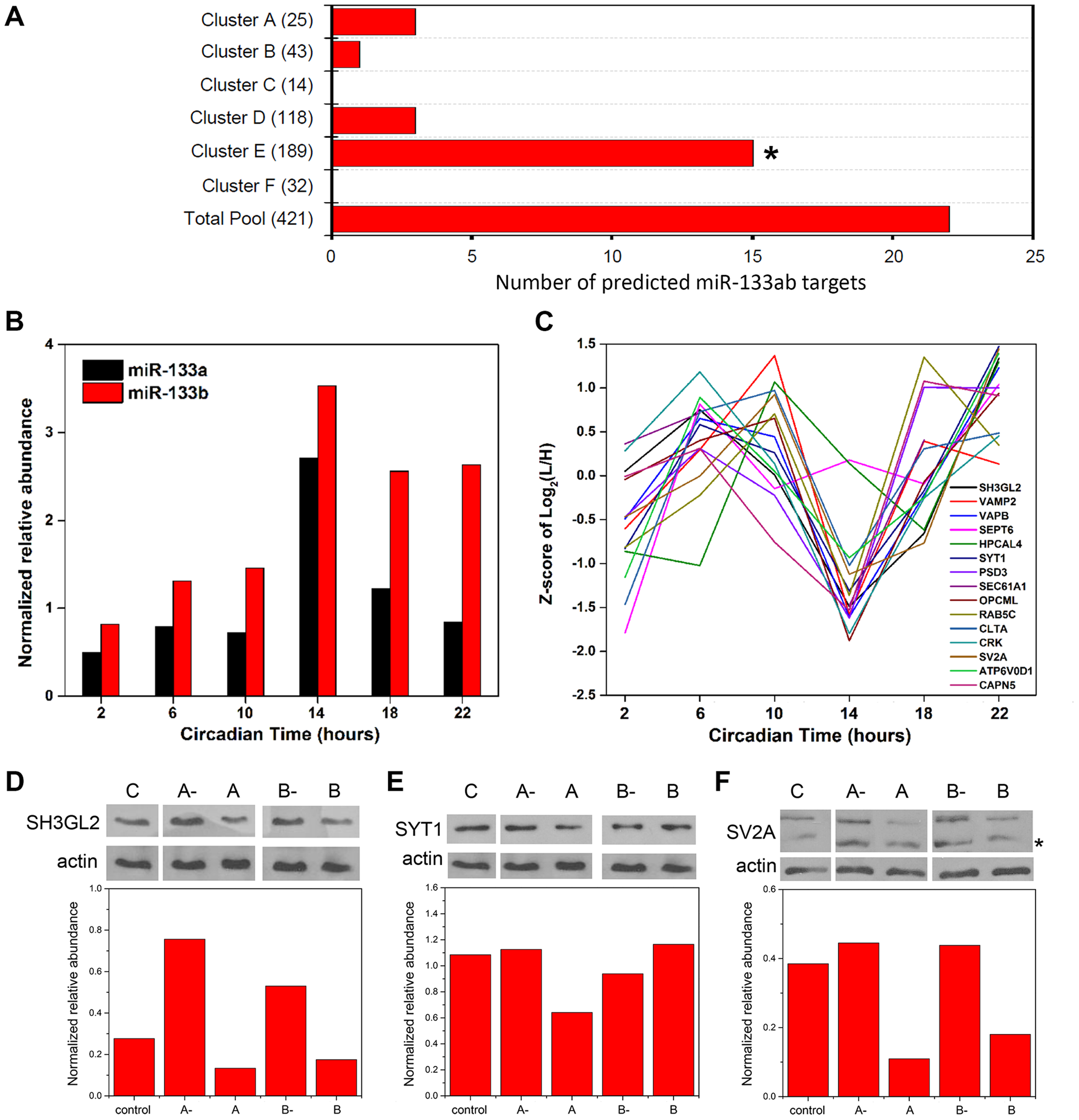 Functional implications for miRNA target enrichment in specific hierarchical clusters.