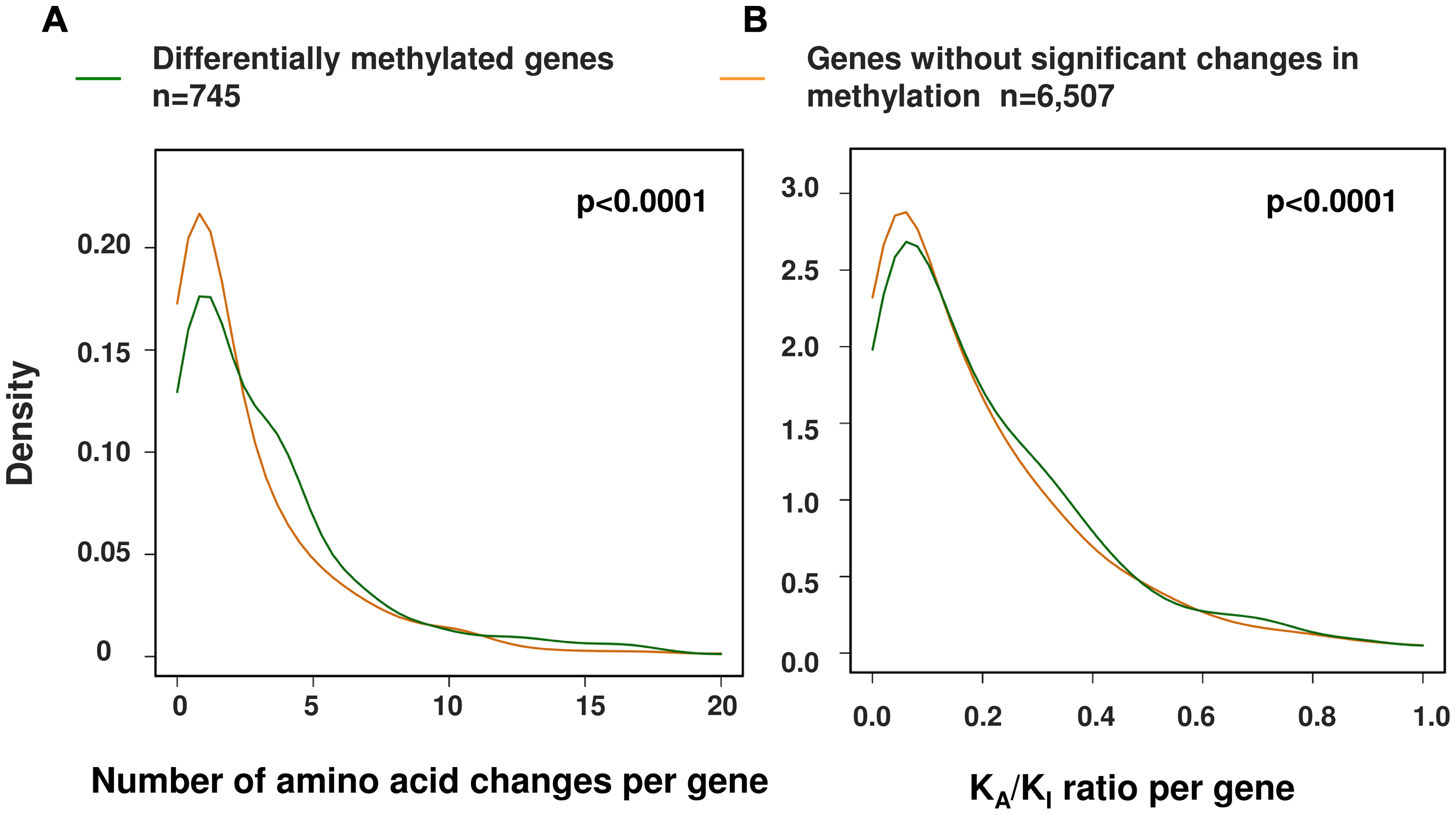 A significant relationship between changes in promoter methylation and protein evolution between human and chimpanzee.