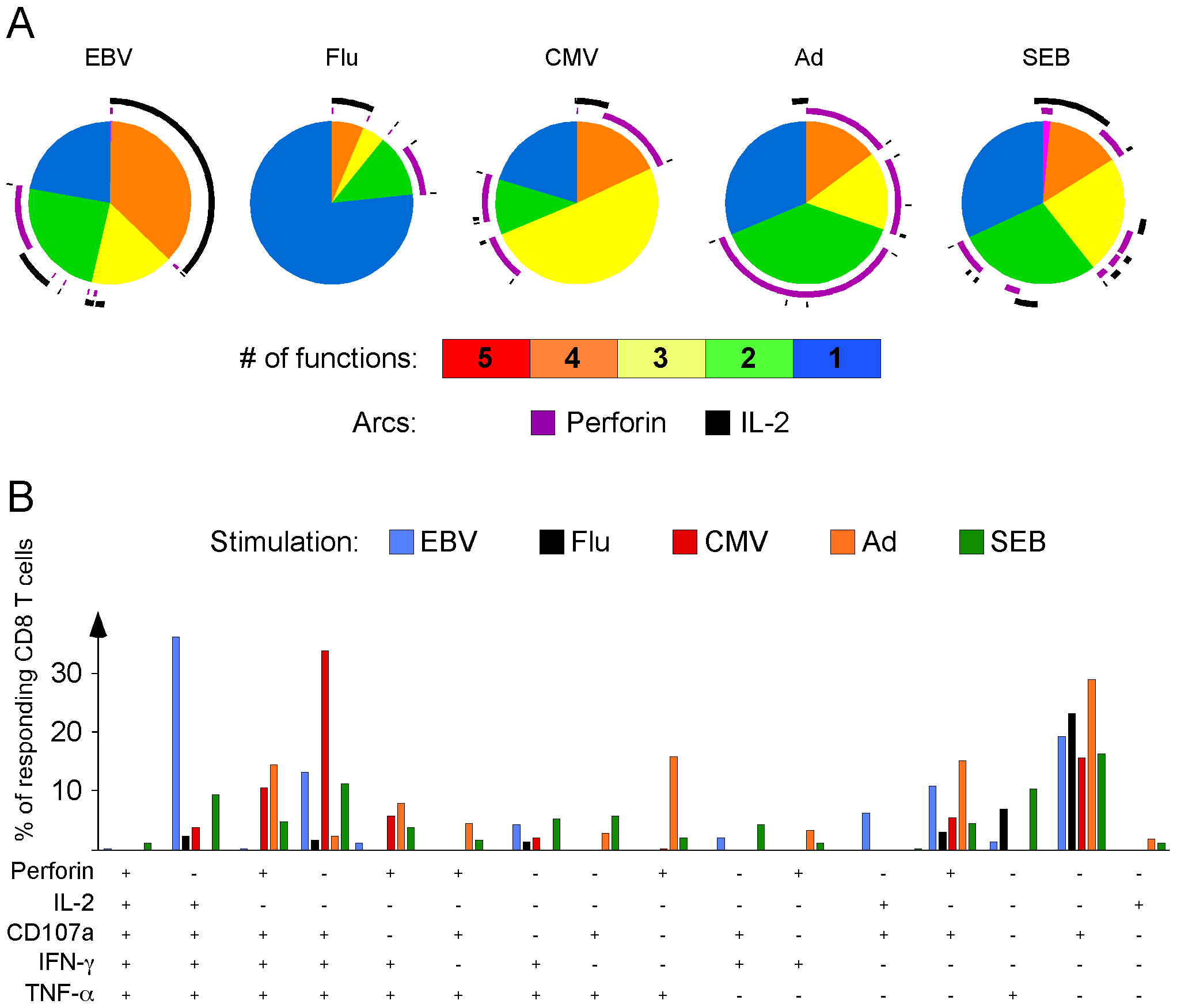Rapid perforin upregulation and IL-2 production define distinct functional subsets for each model virus.
