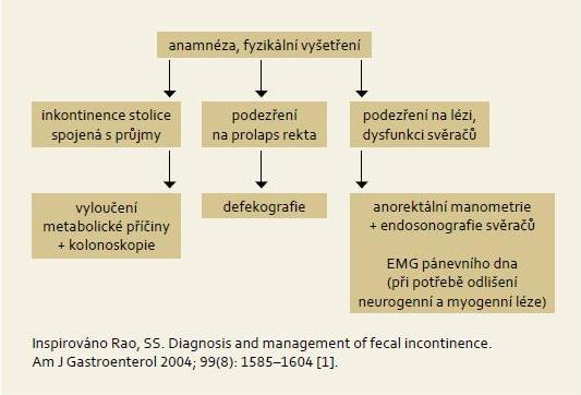 Vyšetřovací postup u pacientů s inkontinencí stolice. Fig. 3. Algorithmic approach for patients with fecal incontinence.