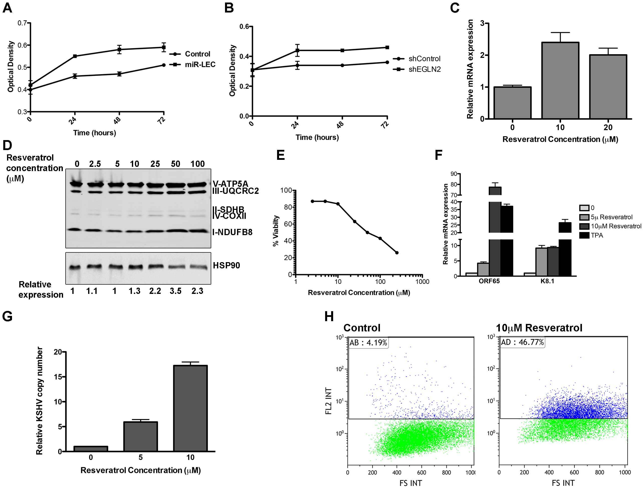 The miRNAs induced metabolic shift enhanced growth under hypoxia and is important for latency maintenance.
