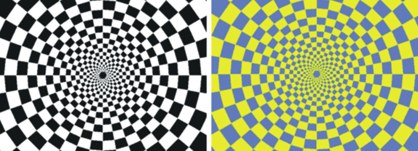 Šachovnicové pole černo-bílé stimulace (a) a žluto-modré stimulace (b). Během stimulace dochází k alternaci šachovnicového pole s jeho inverzí o frekvenci 2 Hz