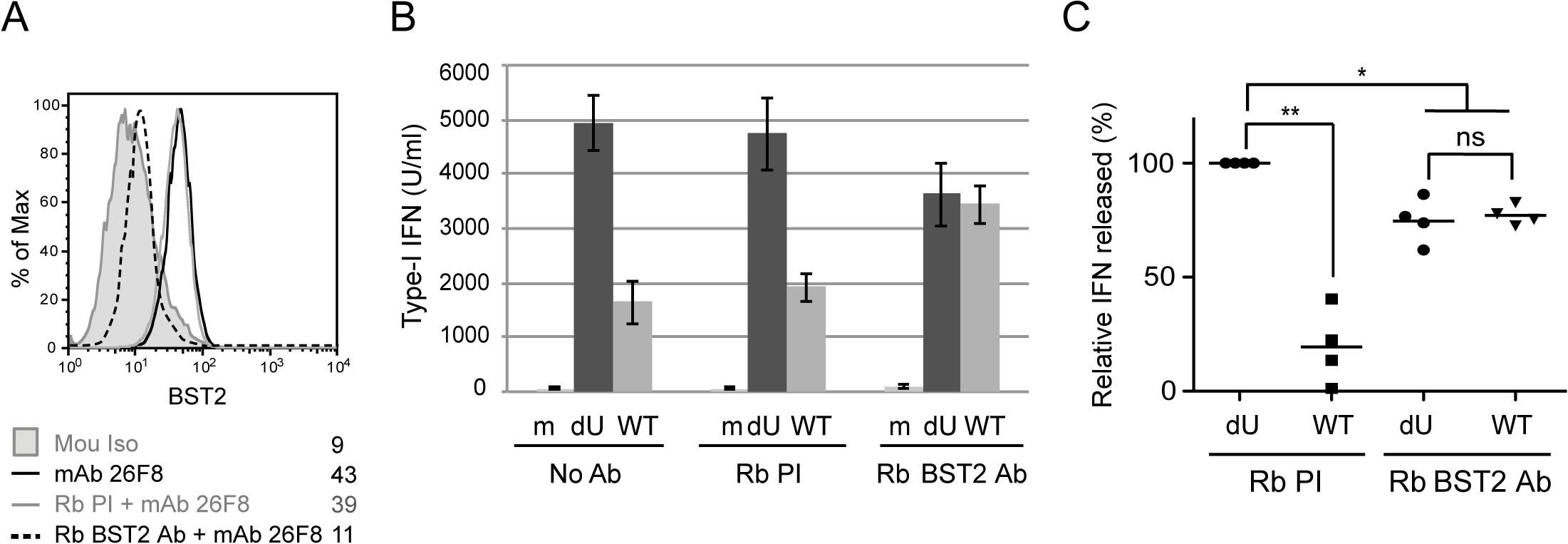 BST2 at the surface of infected cells is required for Vpu-mediated control of IFN-I production.