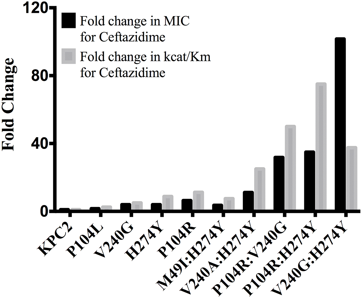 Bar graph comparing the MIC for ceftazidime (black) and catalytic efficiency for ceftazidime hydrolysis (gray).