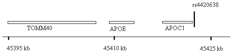 Genomic region surrounding the top hit near <i>APOE/APOC1</i>.