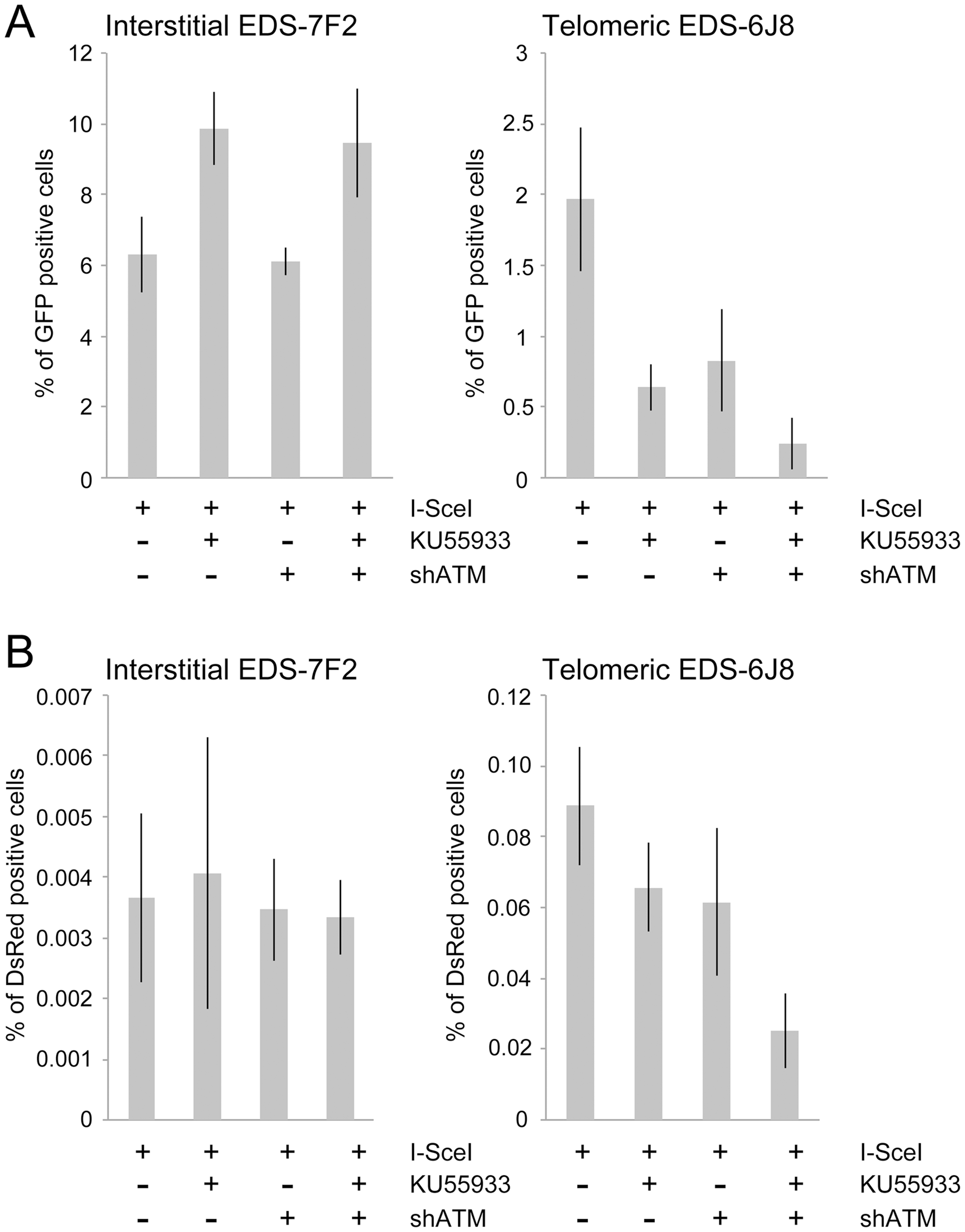 The effect of ATM deficiency on NHEJ and GCRs at interstitial and telomeric DSBs.