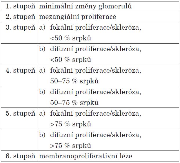 Histologická klasifikace HSP nefritidy.