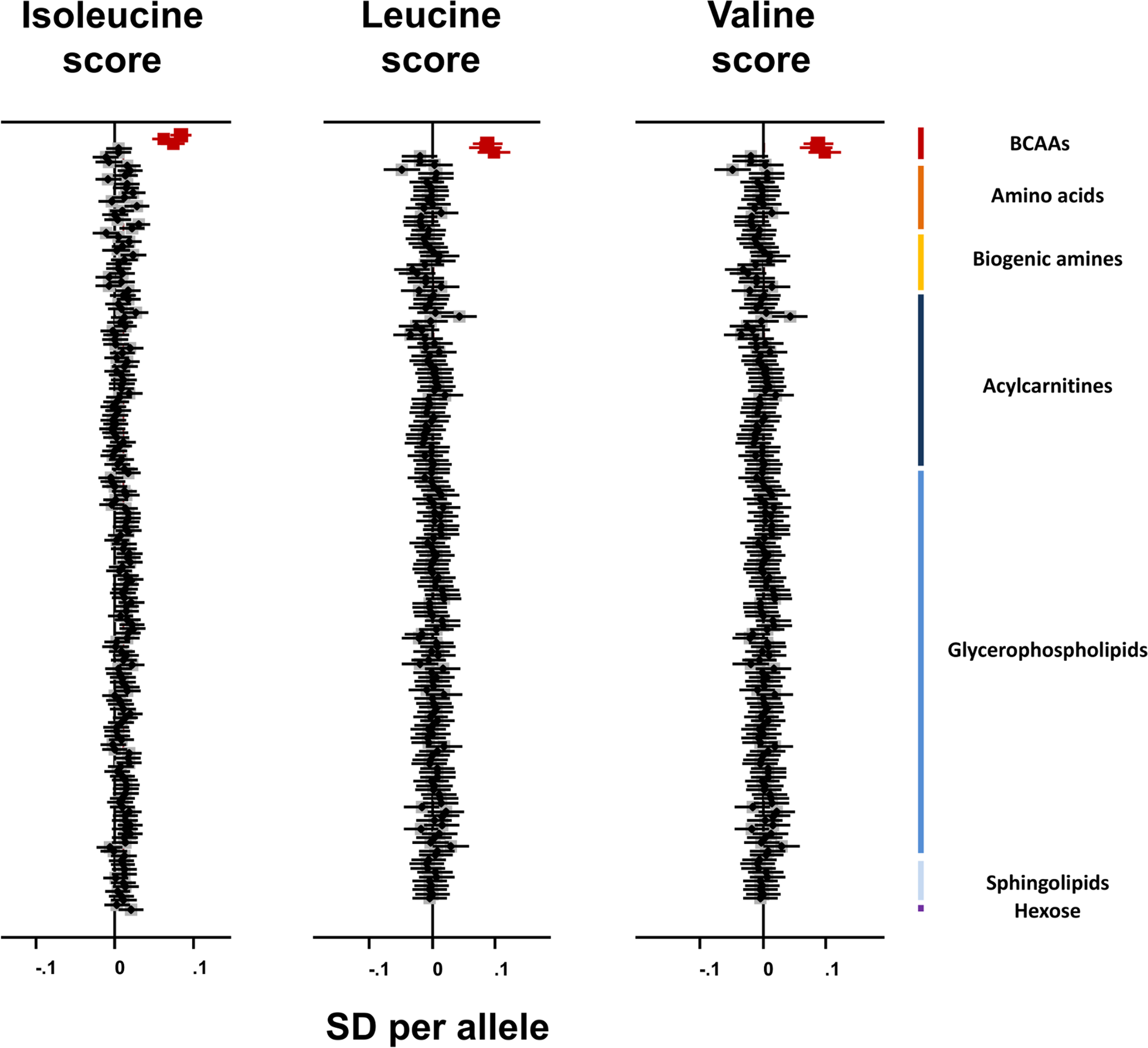 Association of branched-chain amino acid genetic scores with metabolites in the Fenland study.