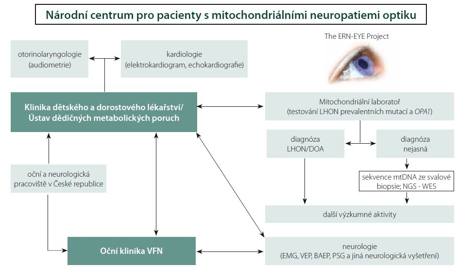 Schéma znázorňující propojení jednotlivých pracovišť VFN v Praze a 1. LF UK, která se podílejí na péči o pacienty s mitochondriálními neuropatiemi optiku. Centrum pro pacienty s mitochondriálními neuropatiemi optiku je zapojením Oční kliniky součástí Evropské referenční sítě pro vzácná onemocnění oka (ERN-EYE).