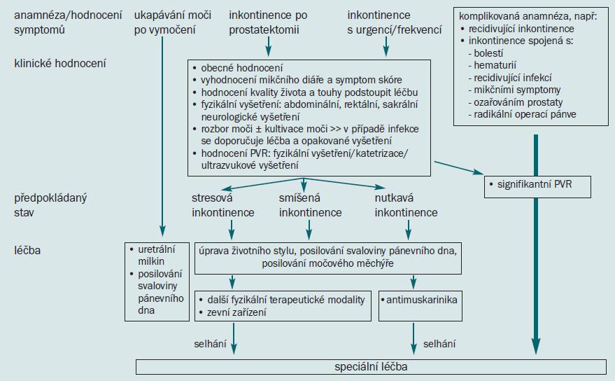 Schéma 4. Počáteční řešení močové inkontinence u mužů.