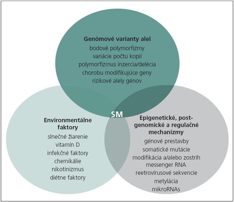 Faktory hrajúce úlohu v etiopatogenéze sklerózy multiplex [77].
