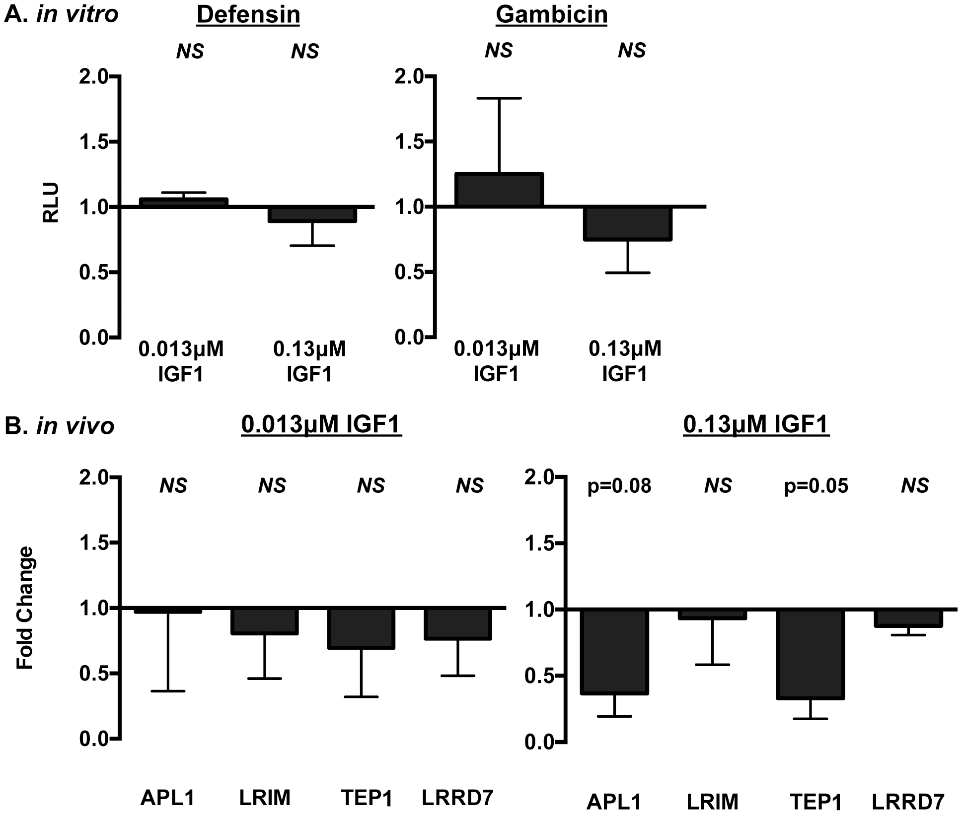 IGF1 did not induce prototypical NF-κB-dependent immune responses in <i>A. stephensi</i> cells <i>in vitro</i> (A) or <i>in vivo</i> (B).