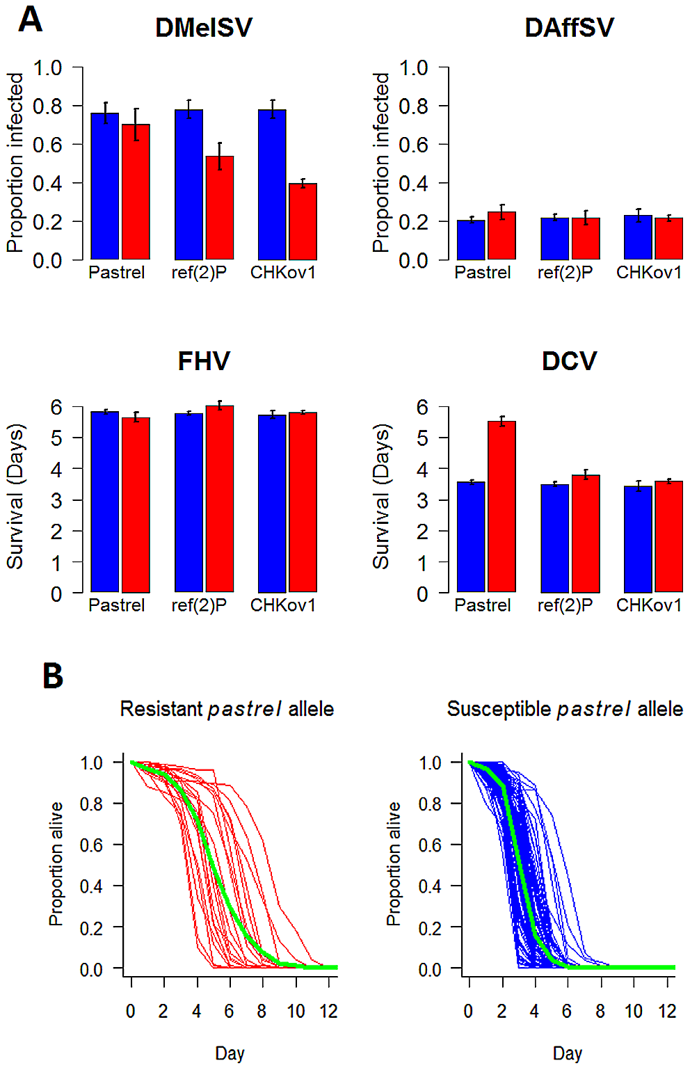 The effect of the three polymorphisms affecting susceptibility on four different viruses.